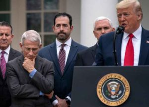 WASHINGTON, DC - MARCH 13: In response to the ongoing global coronavirus pandemic, U.S. President Donald Trump announces that he is declaring a national emergency during news conference with National Institute Of Allergy And Infectious Diseases Director Anthony Fauci (2nd from L), Vice President Mike Pence and other members of his coronavirus task force and leaders from the healthcare industry in the Rose Garden at the White House March 13, 2020 in Washington, DC.