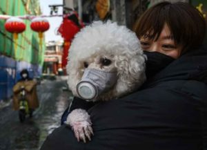 BEIJING, CHINA - FEBRUARY 07: A Chinese woman holds her dog that is wearing a protective mask as well as they stand in the street on February 7, 2020 in Beijing, China. The number of cases of a deadly new coronavirus rose to more than 31000 in mainland China Friday, days after the World Health Organization (WHO) declared the outbreak a global public health emergency. China continued to lock down the city of Wuhan in an effort to contain the spread of the pneumonia-like disease which medical experts have confirmed can be passed from human to human. In an unprecedented move, Chinese authorities have put travel restrictions on the city which is the epicentre of the virus and municipalities in other parts of the country affecting tens of millions of people. The number of those who have died from the virus in China climbed to over 636 on Friday, mostly in Hubei province, and cases have been reported in other countries including the United States, Canada, Australia, Japan, South Korea, India, the United Kingdom, Germany, France and several others. The World Health Organization has warned all governments to be on alert and screening has been stepped up at airports around the world. Some countries, including the United States, have put restrictions on Chinese travellers entering and advised their citizens against travel to China.